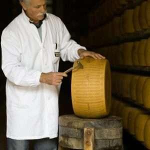 Gourmet tour - Parmigiano Reggiano, Parma ham, Lambrusco wine, balsamic vinegar