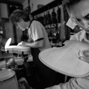 Violin making, Bologna