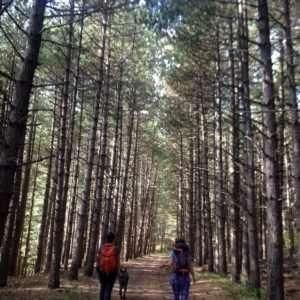Tour natura e sport - Miniere Corchia (4)